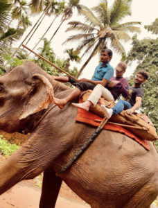 Terry Scholar riding an elephant in India with two other people